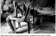 Pandemic and Tea-Laborers of Dooars (India): A Dysphoric Situation of Social Disparity